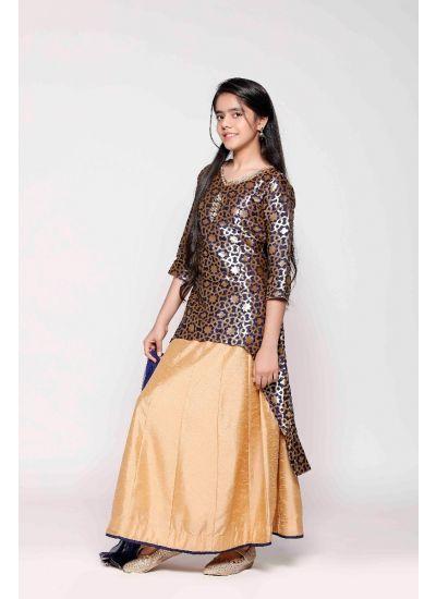 Royal Brocade Silk Gown