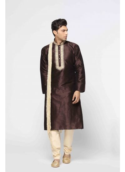 Earthy Hued Embellished Kurta Set
